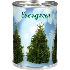 evergreen1