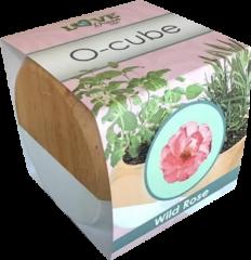 Ocube-WR